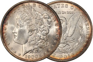 A naturally subtly toned Morgan Silver Dollar.