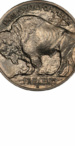 Buffalo Nickel, Type 1 Reverse